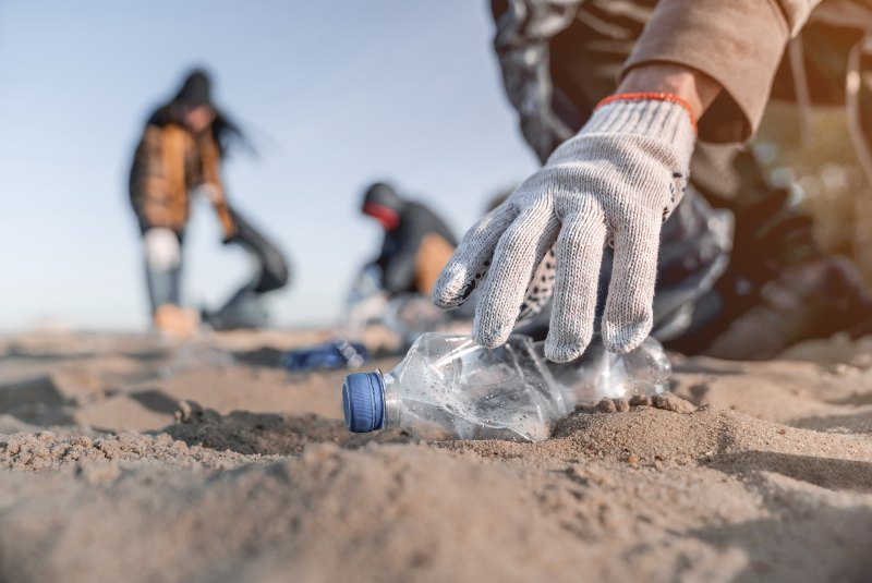Ecosistemas: prácticas de conservación en las empresas.
