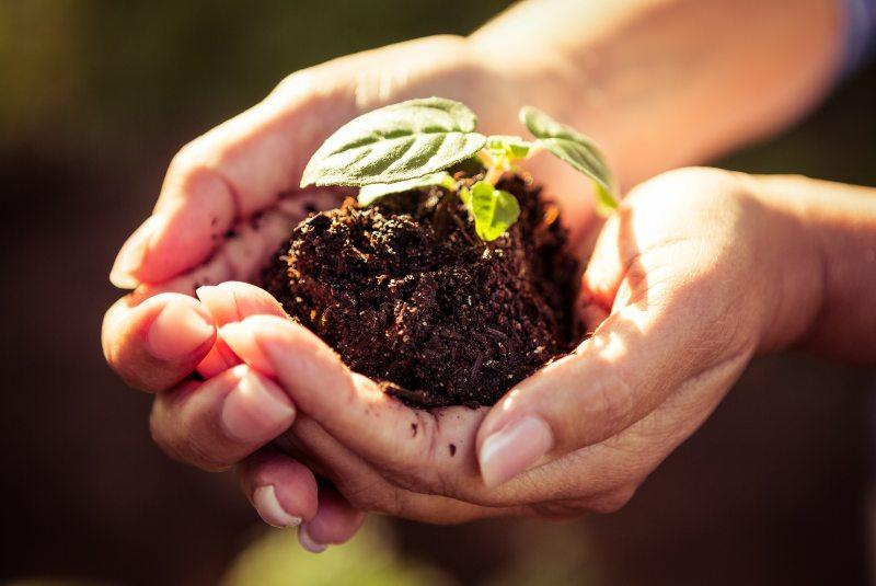 Cumbres ambientales que promueven energías limpias